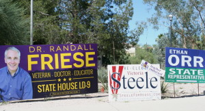 In the 9th legislative district, we endorse both Randall Friese and Victoria Steele ... not Ethan Orr!