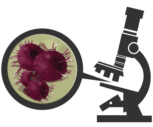 You science. cunnilingus pharyngeal gonorrhea